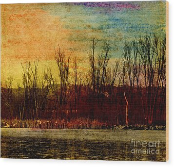 Winter's Shore Wood Print by R Kyllo