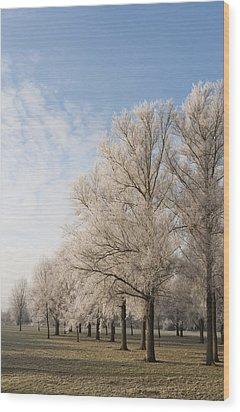 Winter's Trees Wood Print