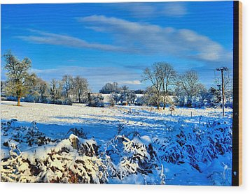 Winters View Wood Print by Dave Woodbridge