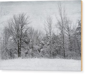 Winter's Wonder Wood Print by Kathi Mirto