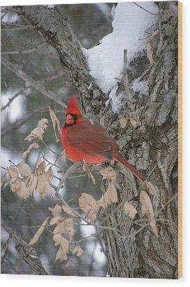 Winters Wonders Wood Print by Peggy  McDonald