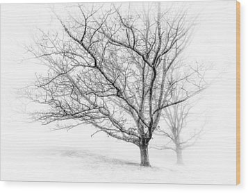 Winter's Work Wood Print by Maria Robinson