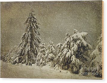Winter's Wrath Wood Print by Lois Bryan