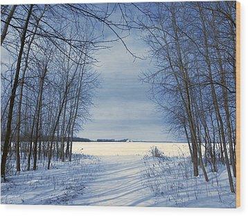 Wintertime At Sheldon Marsh Wood Print