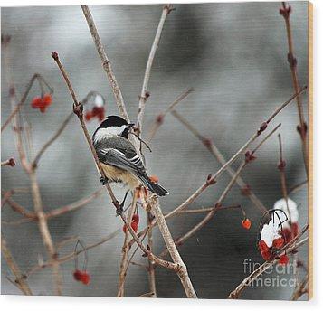 Wintertime Chickadee Wood Print