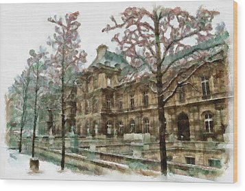 Wintertime Sadness Wood Print by Ayse and Deniz