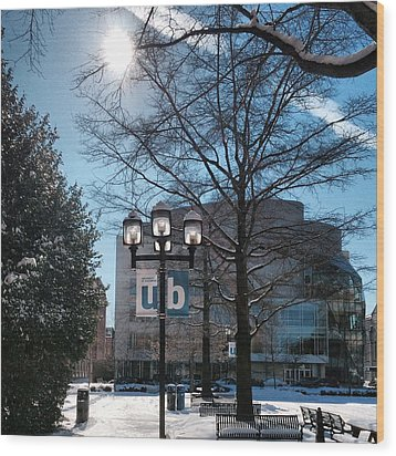 Wintery Gordon Plaza  Wood Print