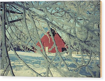 Wintery Red Barn Wood Print by Julie Hamilton