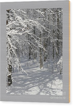 Wintery Woodland Shadows Wood Print by Patricia Overmoyer