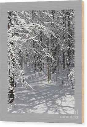 Wintery Woodland Shadows Wood Print