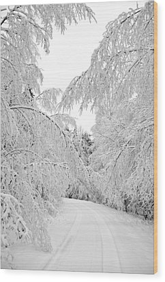 Wintry Road Wood Print by Conny Sjostrom