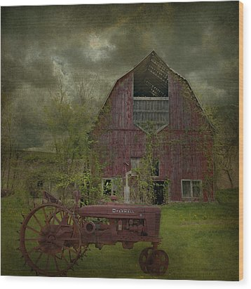 Wisconsin Barn 3 Wood Print by Jeff Burgess