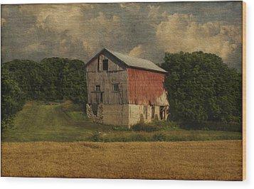 Wisconsin Barn Wood Print by Jack Zulli