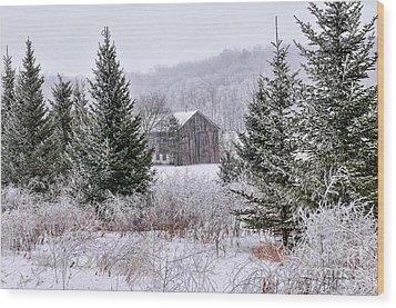 Wisconsin Frost Wood Print by Trey Foerster