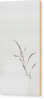 Wisp Wood Print