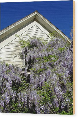Wisteria Cascading Wood Print by Everett Bowers