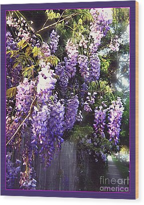 Wisteria Dreaming Wood Print by Leanne Seymour