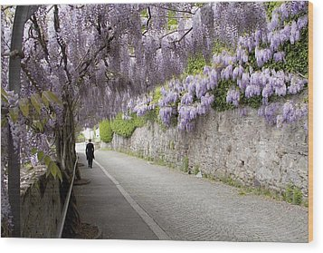 Wisteria Lane Wood Print