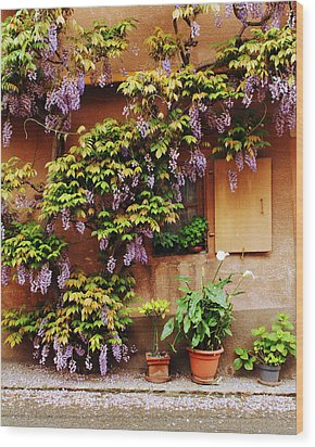 Wisteria On Home In Zellenberg 4 Wood Print by Greg Matchick