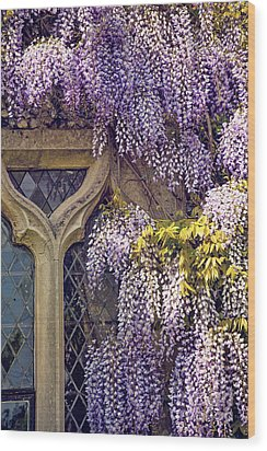 Wisteria Wood Print by Svetlana Sewell
