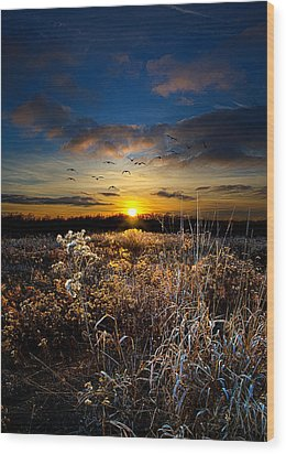 Within Wood Print by Phil Koch