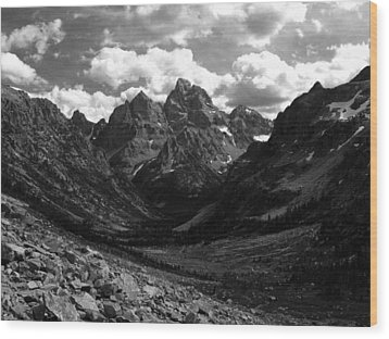 Within The North Fork Of Cascade Canyon Wood Print by Raymond Salani III