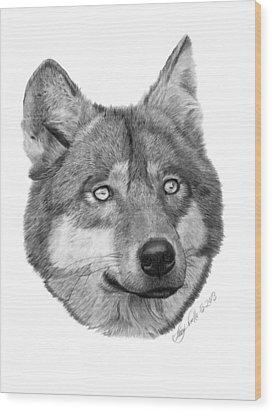 Wolf - 017 Wood Print by Abbey Noelle