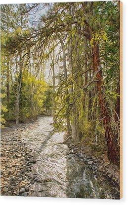 Wolf Creek Afternoon Light Wood Print by Omaste Witkowski