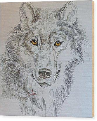 Wolf Eyes  Wood Print by Gracia  Molloy