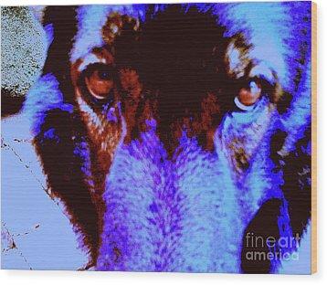 Wolf Eyes Wood Print by Nina Kaye
