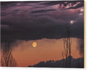 Wolf Moon Wood Print by Roger Chenery