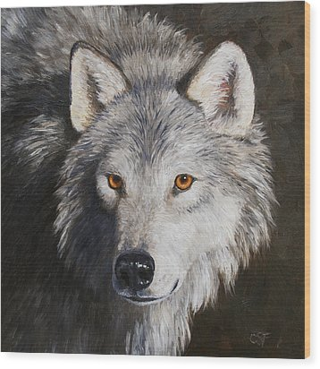 Wolf Portrait Wood Print by Crista Forest