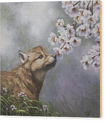 Wolf Pup - Baby Blossoms Wood Print by Crista Forest