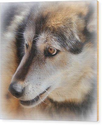 Wolf Spirit Wood Print by Diane Alexander