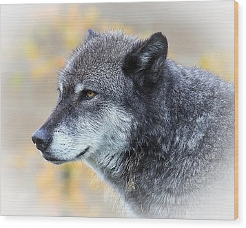Wood Print featuring the photograph Wolf by Steve McKinzie