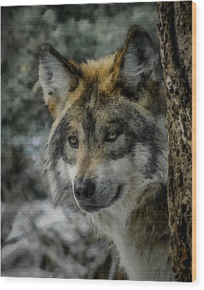 Wolf Upclose Painterly Wood Print by Ernie Echols