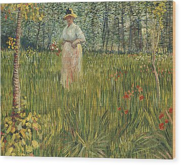 Woman In A Garden Wood Print by Vincent van Gogh