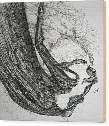 Woman Wood Print by Penny Collins
