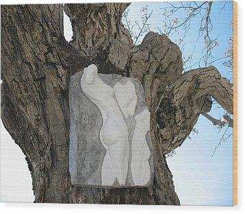 Woman Torso - Cast 1 Wood Print by Flow Fitzgerald