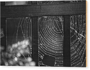 Wonder Web Wood Print by Carrie Ann Grippo-Pike