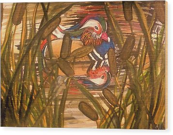Wood Duck At Peace Wood Print by Alexandria Weaselwise Busen