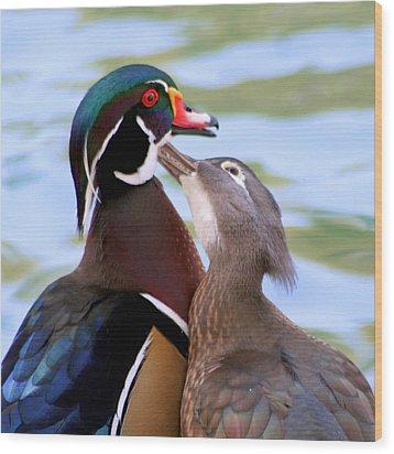 Wood Duck Love Wood Print by Bob and Jan Shriner
