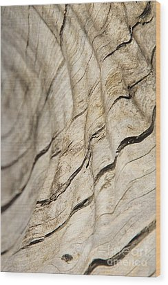 Wood Grain Grunge And Texture Wood Print by Hermanus A Alberts