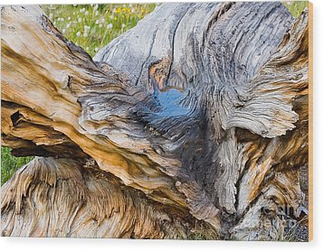 Wood Print featuring the photograph Wood Patterns In Summer by Arthaven Studios