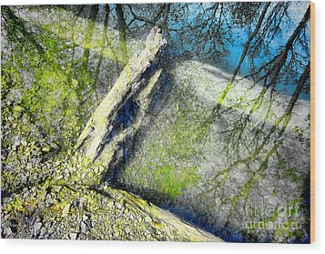 Wood Reflections Wood Print by Olivier Le Queinec