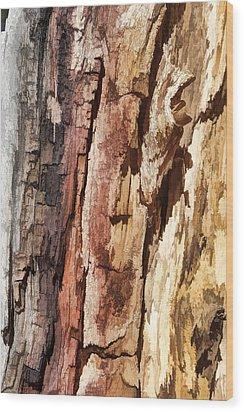 Wood Tones Wood Print