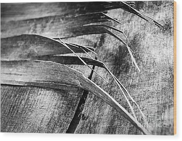 Wood Whispers Wood Print by Dean Harte