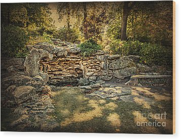 Woodard Park Koi Pond Wood Print by Tamyra Ayles