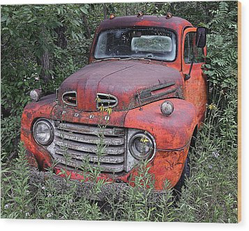Wood Print featuring the photograph Wooded Ford by Christopher McKenzie