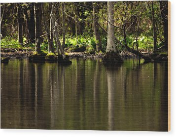 Wooded Reflection Wood Print by Karol Livote